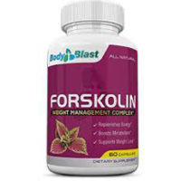 Forskolin Body Blast - pas cher - France - Ingrédients