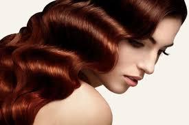 Follicle RX - remède contre la perte de cheveux - la revue - prix - Supplément