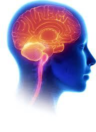 IQooster - sur l'intelligence - composition - santé - forum