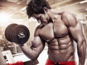 Flexuline Muscle Builder - pour le renforcement musculaire - France - comment utiliser - en pharmacie