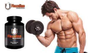 Flexuline Muscle Builder - pour le renforcement musculaire - dangereux - Amazon - comprimés